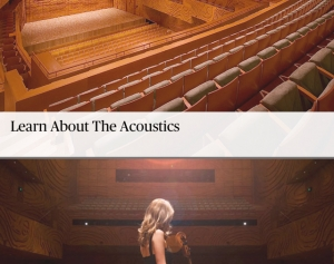 Web_Acoustics1.jpg