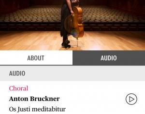 Web_Acoustics2.jpg