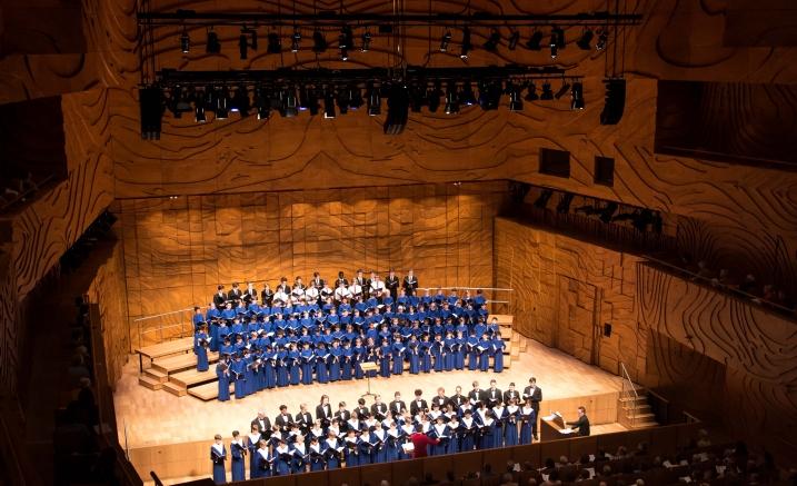 Australian Boys Choral Insitute.jpg