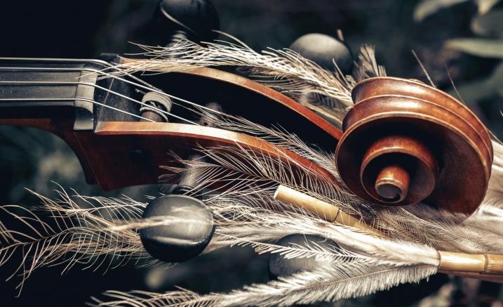 Kulin TIde Strings